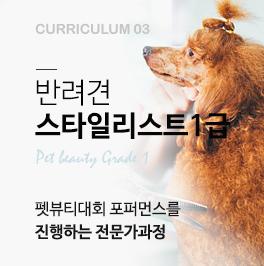 반려견 스타일리스트 1급과정